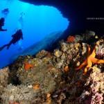 Leila Diving - Capo Figari | Adolfo Maciocco Photography